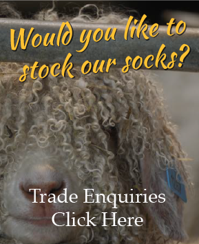 would you like to stock our socks