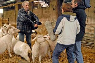 CBBC Animals at Work 2009